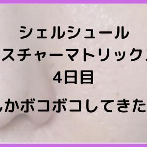 【今日の毛穴写真】ビタミンC×セラミド!シェルシュールマトリックス4日目!→微妙な変化有り