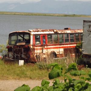 石狩川河口付近の廃バス5台目撮影してきました|ドロンジョバス