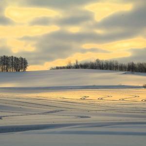 3月下旬、道北地方の雪原は融雪剤での見事なアートが絵描かれています。