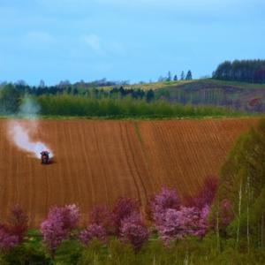 畑作地帯の川西の丘、農作業の繁忙期です。