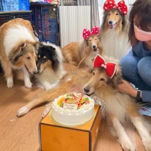 レインちゃん12歳バースディのお祝い。