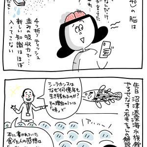 息子とママの脳の吸収力 〜沼津港深海水族館〜
