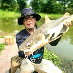 中国国内出張ついでに広州中山釣り遠征釣行(後編)広州市の金目怪魚釣り堀