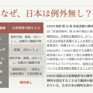 種苗法反対、断固阻止!!日本の「食」と「農」を守りましょう☆