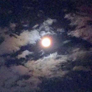 空を見上げるワケは…