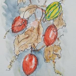里山で描く 4
