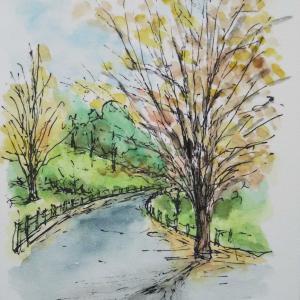 里山で描く 5