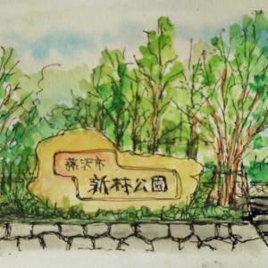 新林公園の入口を描く