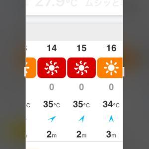 スマホのお天気情報アプリ。