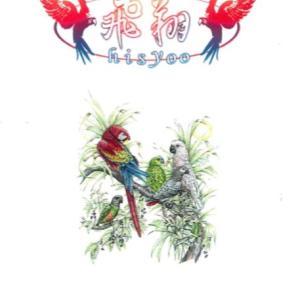 10月31日(土)【鳥フェス横浜】に行こう♪