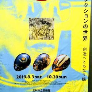 浅川コレクションの世界