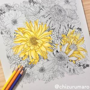 (黄色編)補色で影を作ってお花を塗ってみた(レイラ・デュリーさん/FLORIBUNDA)