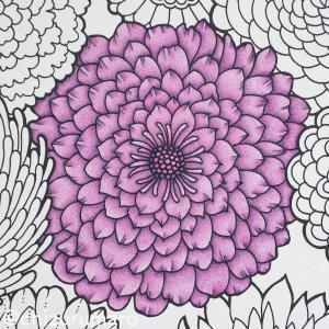 色鉛筆2色でお花を紫色に塗ってみた(Flowers 花を彩るぬりえブック)