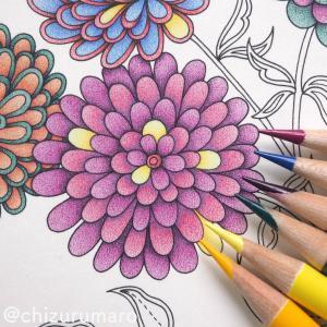 リベンジ塗り⑤ 2種類のあかむらさきを使ったお花、色の違いがわかるように塗りなおせる?