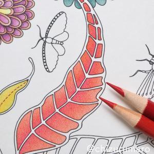 リベンジ塗り10 葉っぱを赤としゅいろの色鉛筆2色でグラデーション