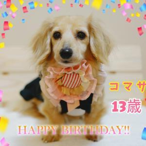 ❤コマサ13歳お誕生日おめでとう❤