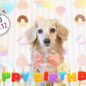 HappyBirthdayコマサ♡(*´∀`)♪