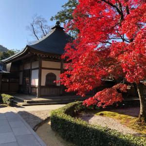永源寺と湖東三山の紅葉