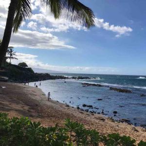 ひとりハワイ(1)マウイ島初日