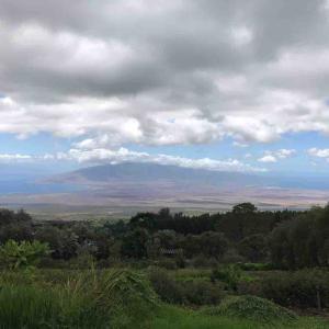 ひとりハワイ(4)ハレアカラをあとにして