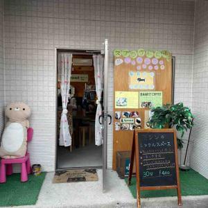 ネコちゃんとハワイアン雑貨のお店