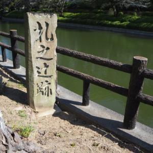 松山市城山公園の桜満開