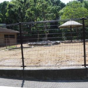 とべ動物園カンガルー舎がもぬけの殻
