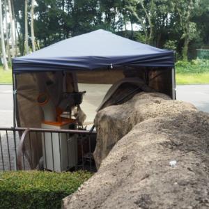 とべ動物園に作業用テント現れる