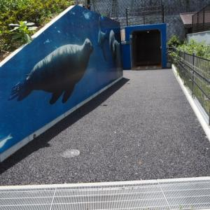 とべ動物園アシカ舎道路がリニューアル