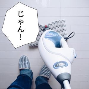 スボラーの掃除