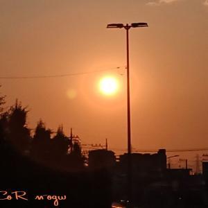 夕陽を見ながら