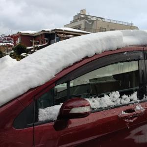 真冬っていつ?いきなり冬突入。