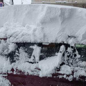 大雪につき、強制的自粛Stay home
