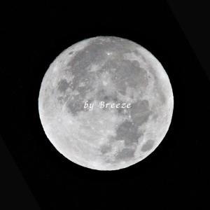 今朝 [ 2019-12-12 ] の月・・・
