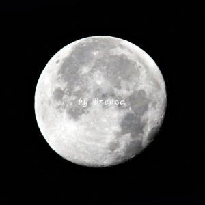 朝の月とオリオン座と夜の月・・・(^_^;