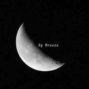 明け方に輝く月・・・