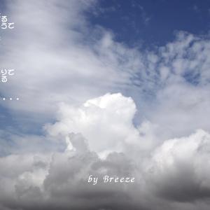 サヨナラ、夏の空・・・