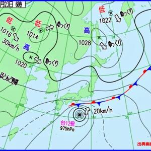 2020年、台風12号・ドルフィン・・・