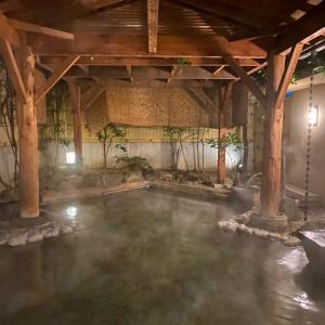 山梨温泉旅行〜ガチ源泉掛け流し深雪温泉はすごい〜