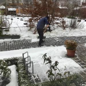 雪雪雪、そして雪