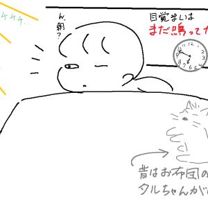 目覚めのノビーッ