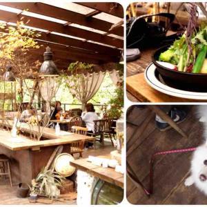 犬同伴可のレストラン RKガーデン 軽井沢