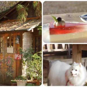犬OKのレストラン ヒルトップファーム