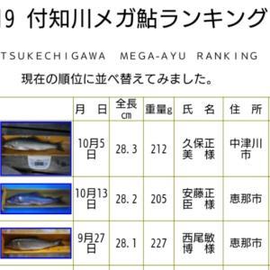 2019付知川メガ鮎ランキング結果確定