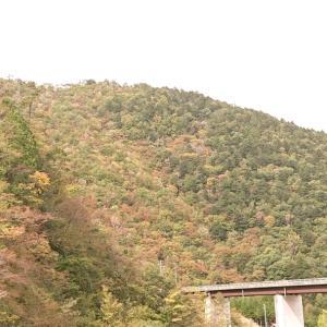 馬瀬川上流はすっかり秋の装いに