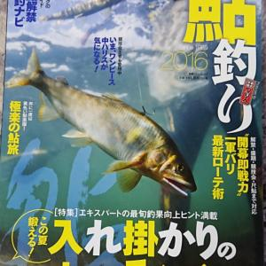 1シーズン(3ヶ月)の鮎釣り匹数に驚き、