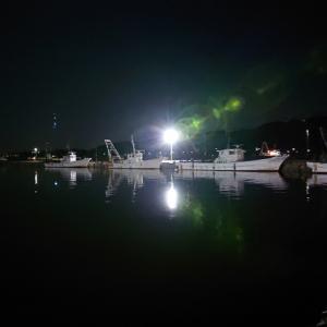 漁港朝市へ釣りたての魚を求めて