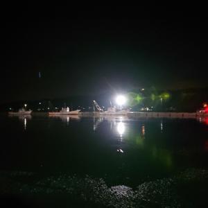 西浦漁港の朝市は何時も大混雑