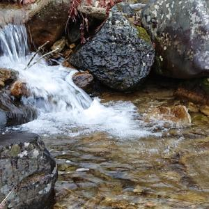 渓流釣り5回目【馬瀬川上流】