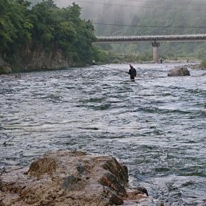馬瀬川上流での鮎釣り直ぐを振り返って